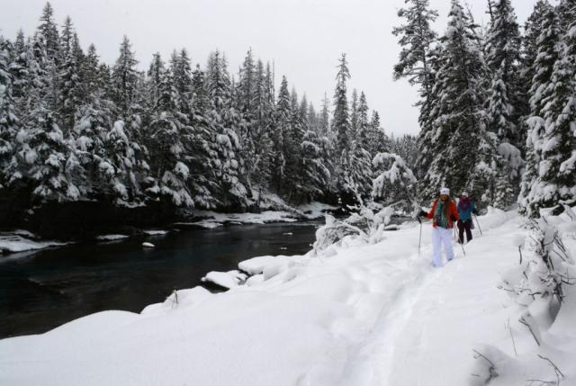 snowshoe glacier park