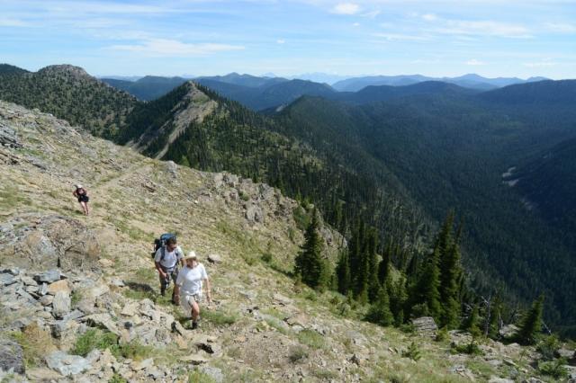 trek montana
